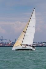 Chopper Cup 2013-8334
